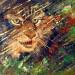 Lynx dans la nuit, huile sur acrylique, 12 x 16 thumbnail