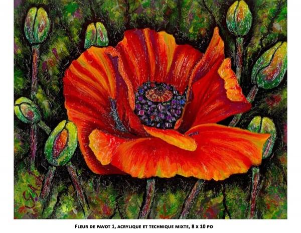 Fleur de pavot 1