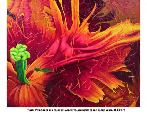 Tulipe Perroquet aux couleurs ardentes