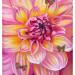 Bijou de fleur thumbnail