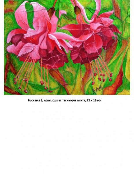 Fuchsias 3