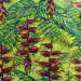 Feuilles et héliconias tropicales thumbnail