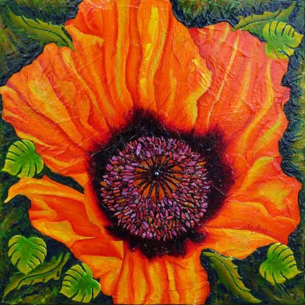 Fleur de pavot 3
