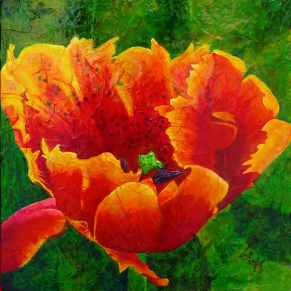 La tulipe tachetée